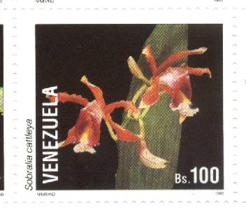 Sobralia cattleya stamp from Venezuela
